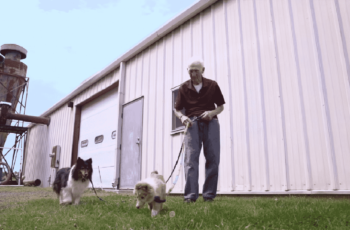 Retired man who helps disabled animals
